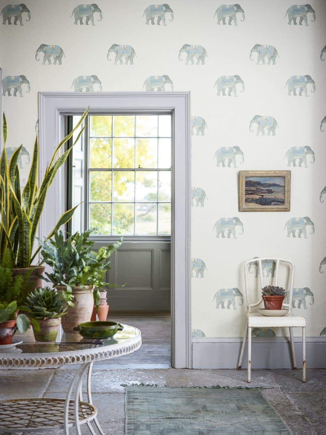 pared estampado elefante